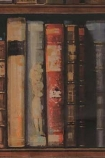 Close-up detail image of the Andrew Martin Navigator Collection - Library Bookshelf Wallpaper - Multicoloured rustic coloured books on shelves repeated pattern