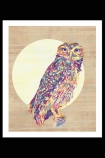 lifestyle image of Unframed Owl Fine Art Print multicoloured owl in front of circle in black frame and black wall background
