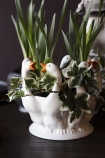 Close-up detail image of the White Pekin Ducks Plant Pot Vase with plants in it on dark wooden surface and dark wall background