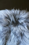 detail image of Genuine Icelandic Long Wool Sheepskin - Silver with dark wall background