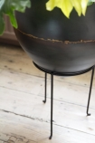 Close up detail image of iron planter on its stand with pale wooden flooring