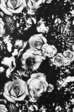 Rockett St George Flower Power Wallpaper - Monochrome