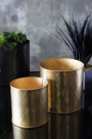 lifestyle image of Set Of 2 Gold Effect Faceted Planters  with plants in background on black table