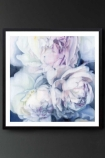 "Lifestyle image of the Unframed Art Print by Amy Carter ""Fall From Grace"" pink roses on blue background on dark grey wall background"