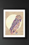 lifestyle image of Unframed Owl Fine Art Print multicoloured owl in front of circle in black frame and dark wall background
