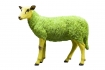 Pikes at Rockett St George - Green Party Sheep