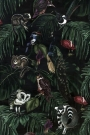 Dark Amazonia Wallpaper - Owls, Lemurs and Birds climb over the leaves in the night - Rockett St George