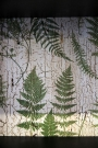 Close up of the fern tree leaves lining in the cabinet - Rockett St George