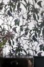 Witch & Watchman Folia Wallpaper - Light