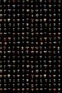 Forager Wallpaper - Black