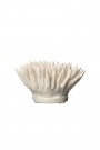 Image of the White Stoneware Urchin Coral Ornament on a white background