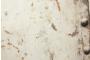 Koziel Rusted Metal Plate Wallpaper
