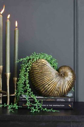 Lifestyle image of the Gold Shell Planter