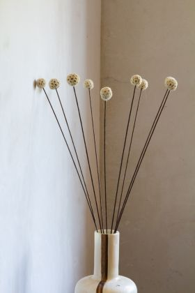 Image of the 10 Stems Of Dried White Pom Poms in a vase