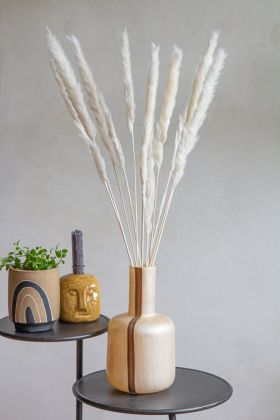 Lifestyle image of the Bright Natural Pampas Grass