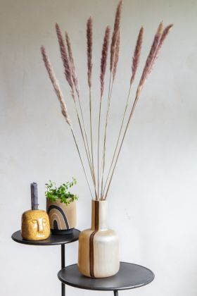 Lifestyle image of the Natural Pampas Grass With Hints Of Mauve & Pink