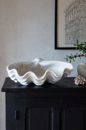 Lifestyle image of the Antique White Clam Shell Display Ornament