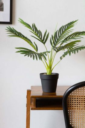 Image of the Artificial Palm Tree on a desk