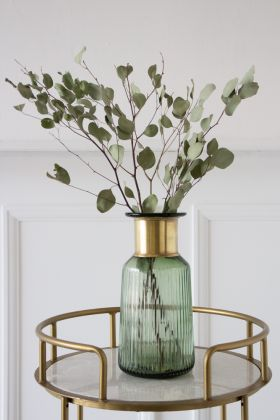 Image of the Bunch Of Dried Silver Dollar Eucalyptus in a vase