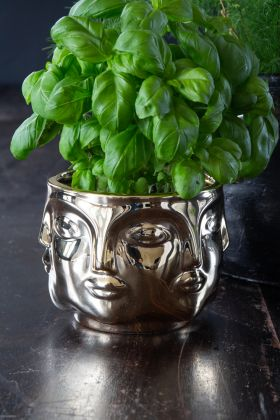 Image of the Gold Faces Bowl