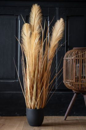 Lifestyle image of the Faux Pampas Grass In Pot