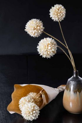 Image of the Dried Snowball Flowers Wrapped In Paper and in a vase