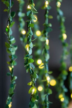 Close-up lifestyle image of the Green Leafy Decorative Fairy Lights