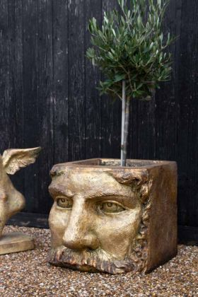Lifestyle image of the Large Gold Effect Classical Face Planter
