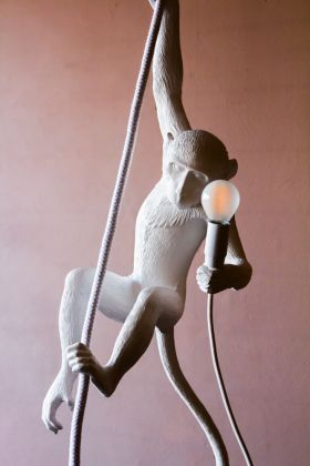 Image of the Monkey Ceiling Light with the light off