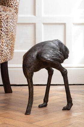 Image of the Quirky Bronze Effect Ostrich Display Ornament