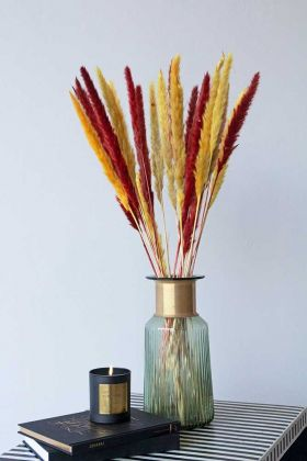 Lifestyle image of the Set Of 6 Stems Of Dark Red & Golden Coloured Pampas Reeds in a vase
