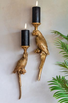Image of the Left & Right Golden Macaw Parrot Candle Holders