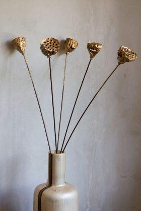 Image of the Set Of 5 Gold Lotus Seed Heads in a vase