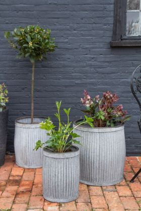 Front on lifestyle image of the Set Of 3 Galvanised Planters