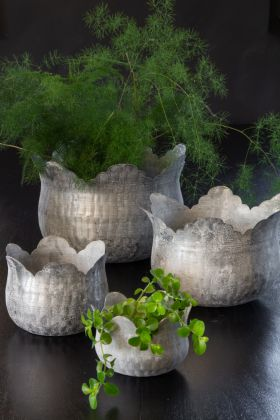 Image of the Set Of 4 White Washed Antique-Style Plant Pots