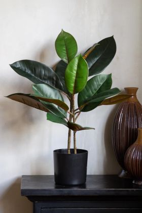 Two-Tone Artificial Rubber Plant