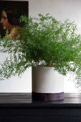 Close-up lifestyle image of the White Ceramic Planter With Dark Base