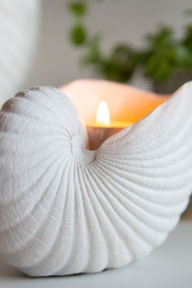 Close-up image of the White Sea Shell Display Ornament with a candle lit inside