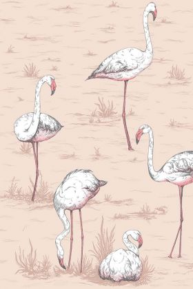detail image of Cole & Son New Contemporary - Flamingos Wallpaper - Ballet Slipper 112/11039 - ROLL pink and white flamingos on pink background repeated pattern
