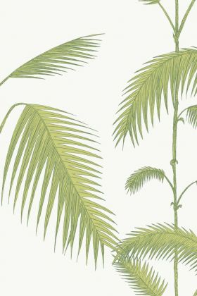 Cole & Son Contemporary Restyled - Palm Wallpaper - Green on White 95/1009 - ROLL