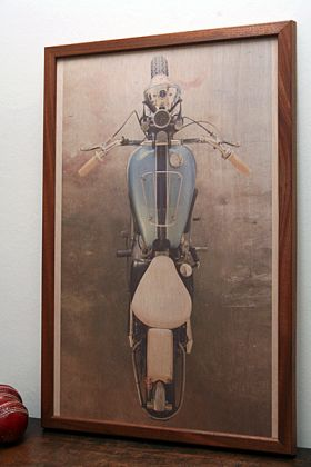 Image of the Triumph Insect' Fine Art Print on Wood by David Corbett