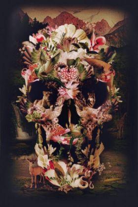 cutout image of Unframed Jungle Skull Fine Art Print in black frame