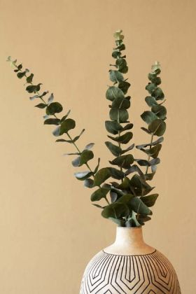 Lifestyle image of the Faux Eucalyptus Stems in a vase with cloisters painted wall background