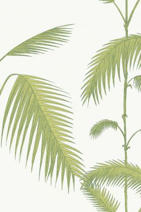 detail image of cole & son contemporary restyled - palm wallpaper - green on white