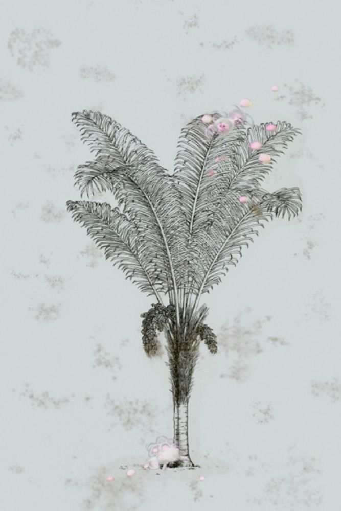 detail image of elli popp desert grove wallpaper - mint grey palm tree with pink bubbles on mint green background repeated pattern