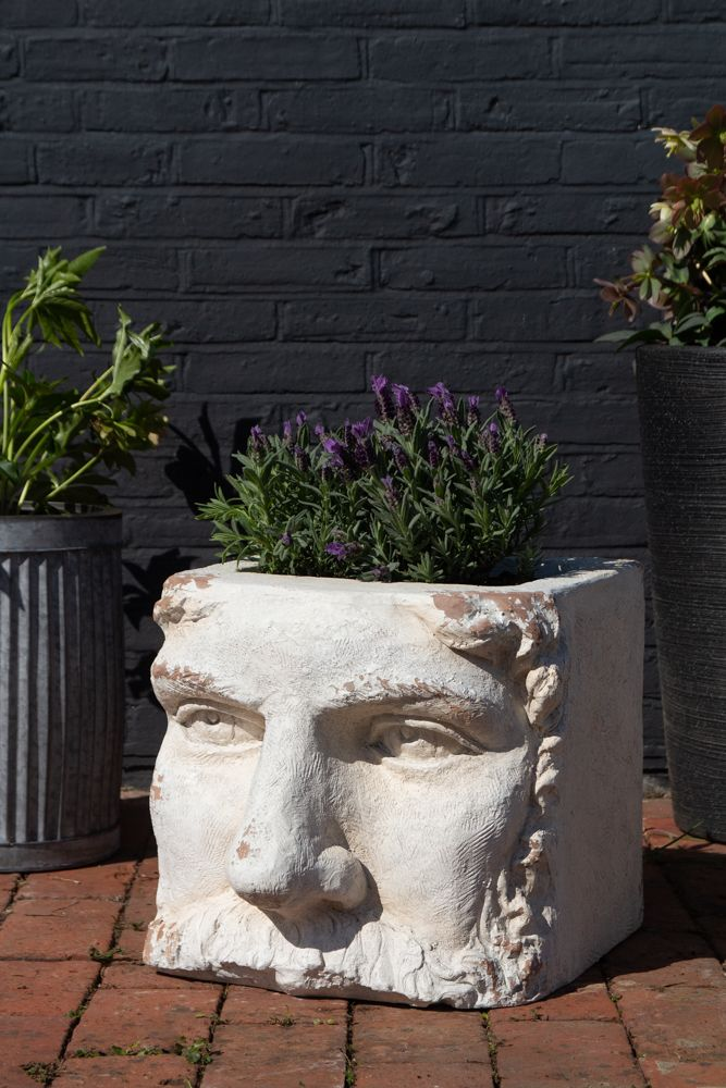 Lifestyle image of the Large Rustic Stone Effect Classical Face Planter