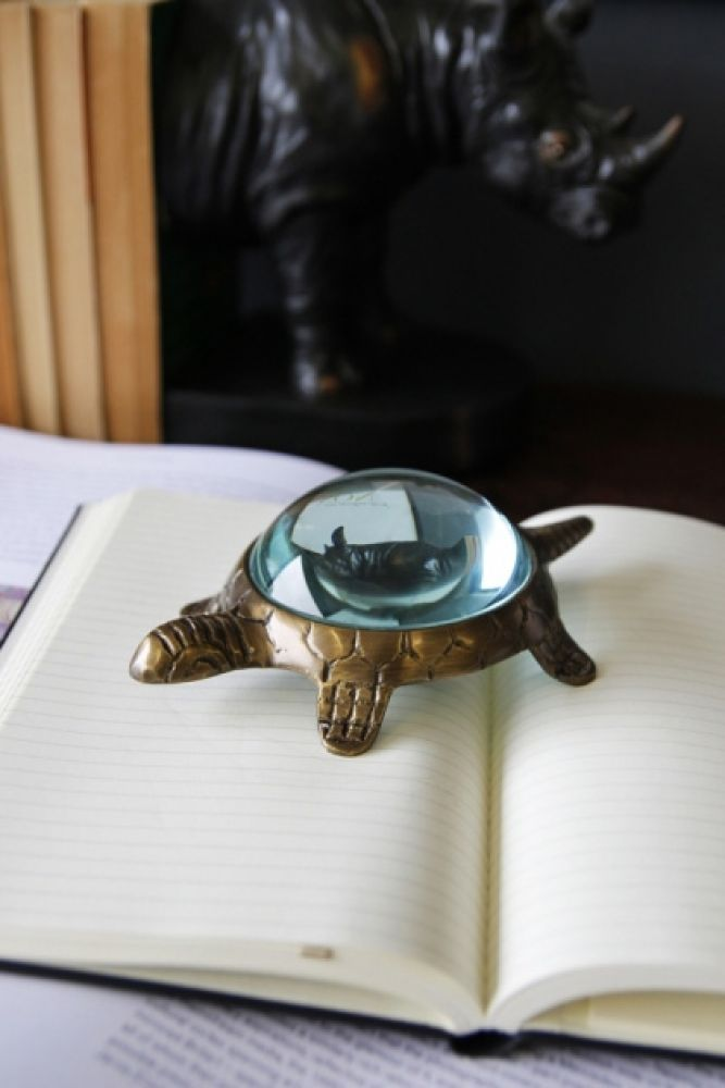 lifestyle image of turtle magnifying glass on open book with rhino bookends in background