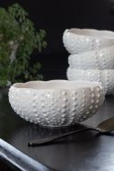 Image of the Antique White Ceramic Small Serving Bowl