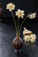 Image showing the Natural Dried Dahlia Flowers Wrapped In Paper and in a vase