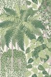 Close-up sample image of the Fern Wallpaper by Cole & Son